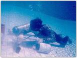 pool uw tiles2 Underwater Tiles Replacement